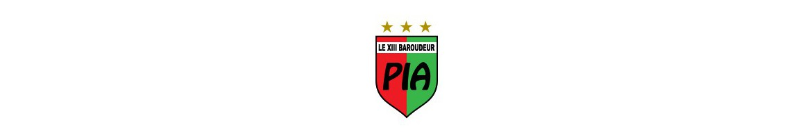 Pia XIII